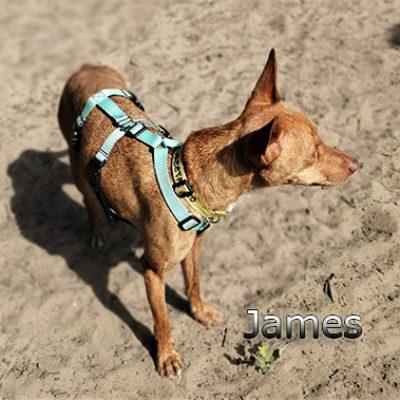 james3web