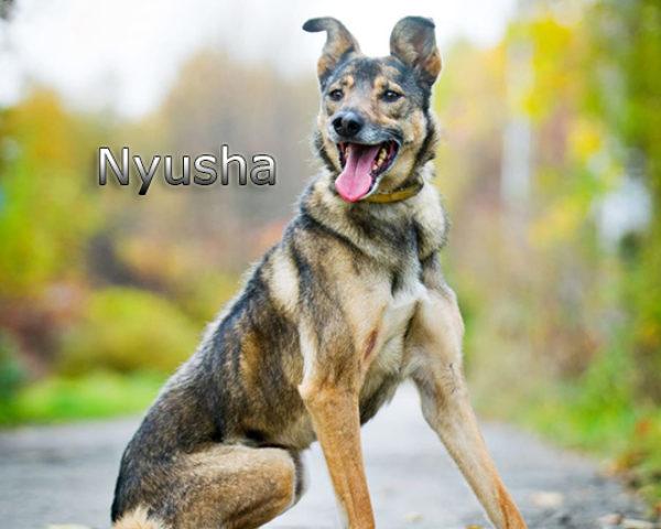 Nyusha18w