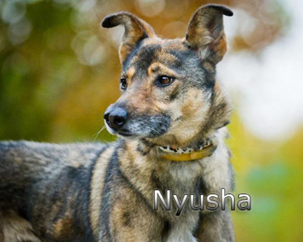 Nyusha6w