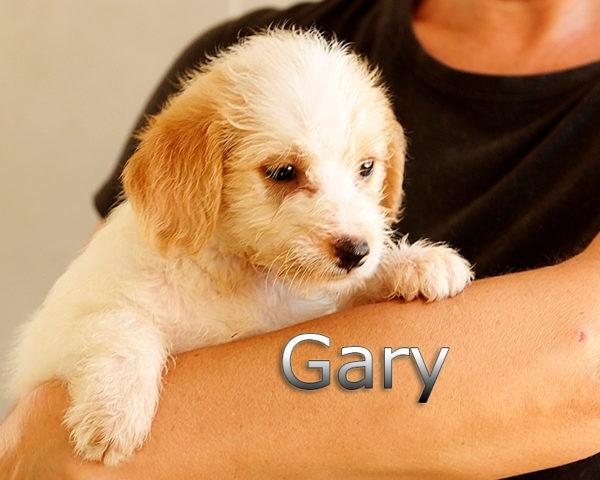 GARY-002