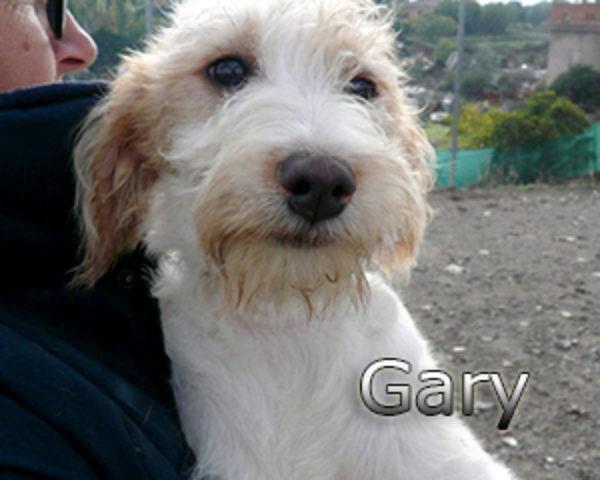 GARY-010web