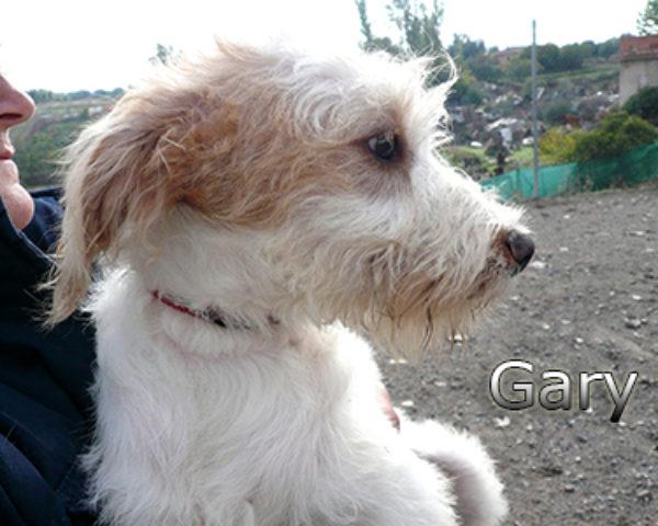 GARY-011web