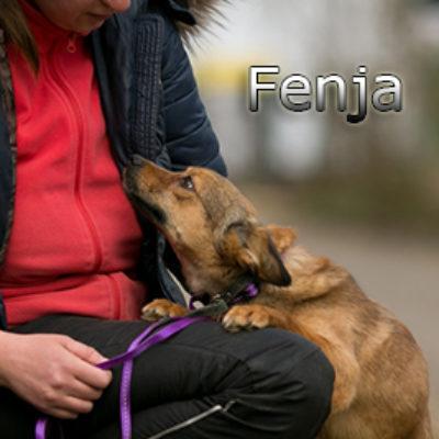 Fenja-(11)web
