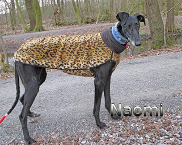 Naomi_Update_190319-(1)web