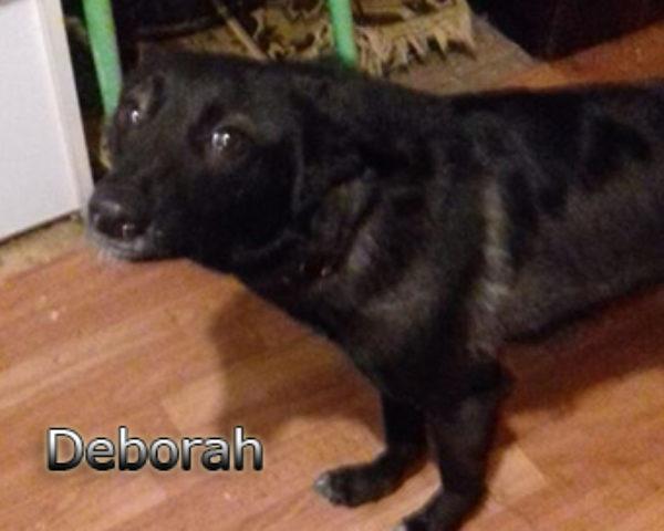 Deborah-(4)web
