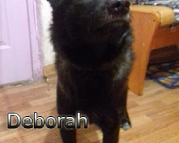 Deborah-(5)web