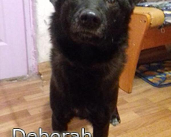 Deborah-(6)web