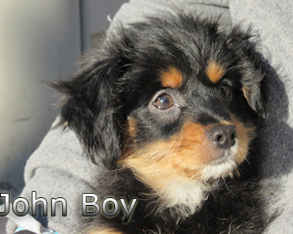 John-Boy-(10)web