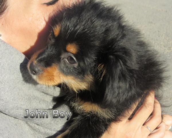 John-Boy-(4)web