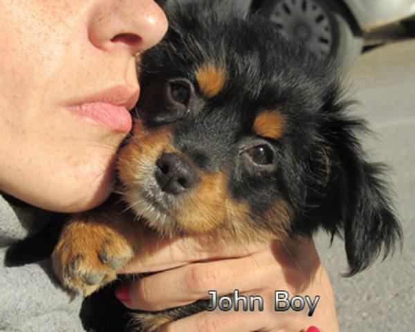 John-Boy-(6)web