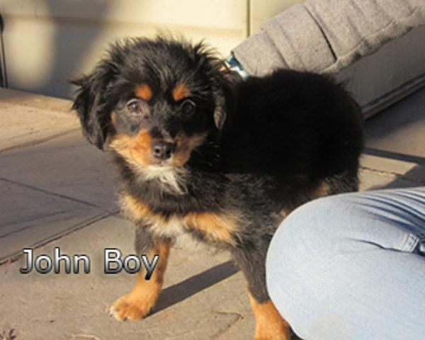 John-Boy-(8)web