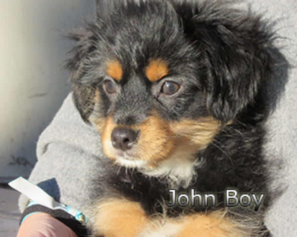 John-Boy-(9)web