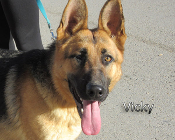 Vicky4