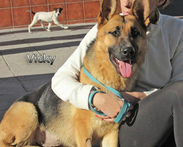 Vicky7