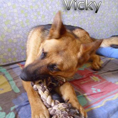 Vicky_06062019-(5)web