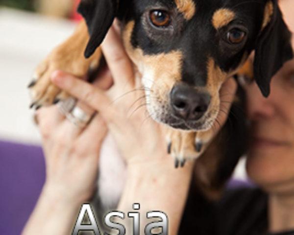 Asja-(2)WEB