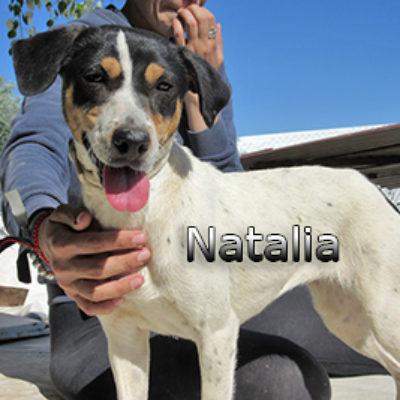 Natalia-(4)web