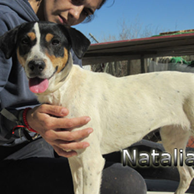 Natalia-(6)web