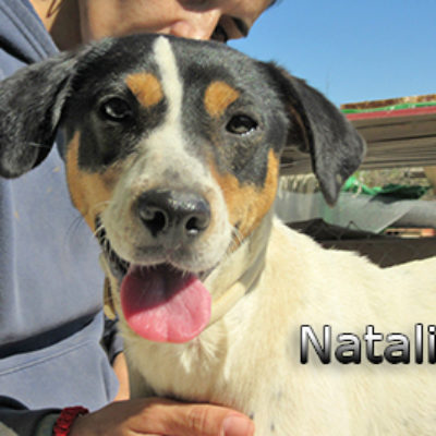 Natalia-(7)web