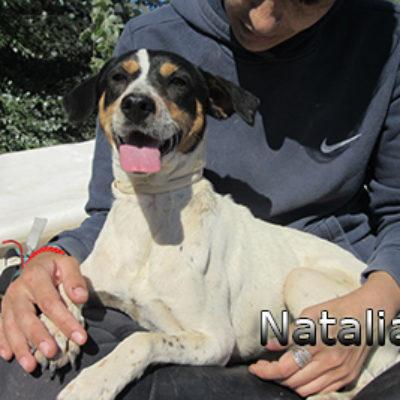 Natalia-(9)web