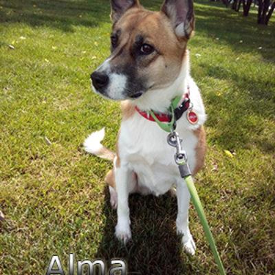 Alma_072019-(3)web