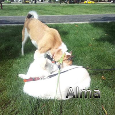 Alma_082019-(3)web