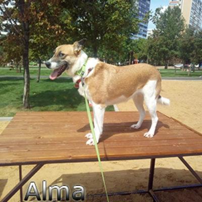 Alma_082019-(4)web