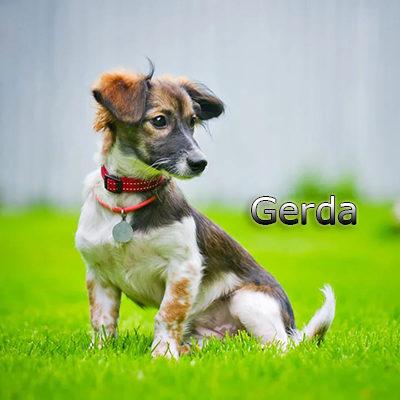 Gerda_082019-(3)web