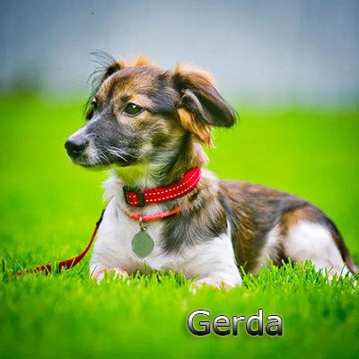 Gerda_082019-(5)web
