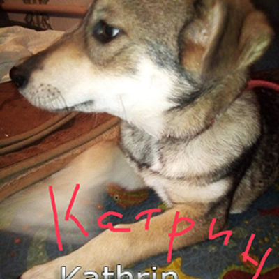 Kathrin-(2)web