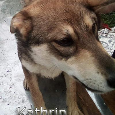 Kathrin-(6)web