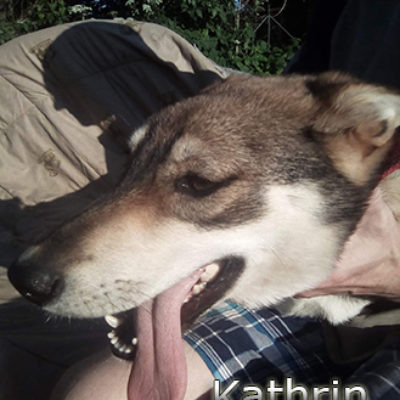 Kathrin-(7)web