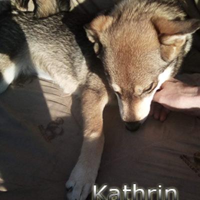 Kathrin-(9)web