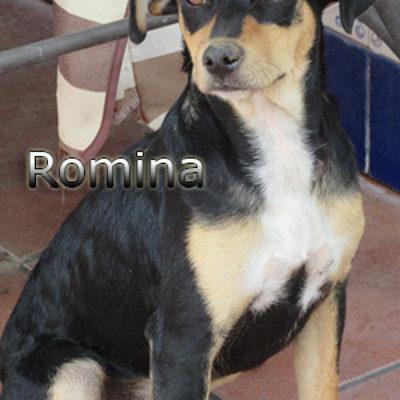 Romina-(11)web