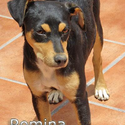 Romina-(14)web