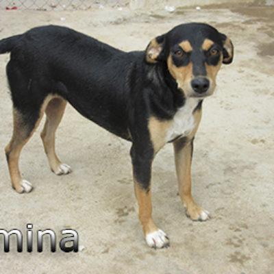 Romina-(5)web