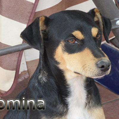 Romina-(9)web