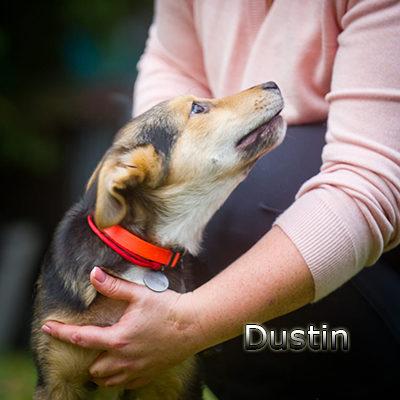 Dustin-(16)web