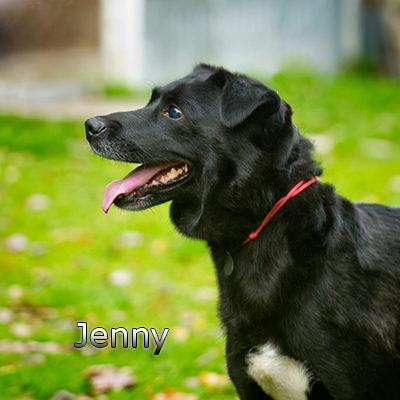 Jenny3_Russ-(15)web
