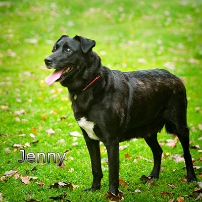 Jenny3_Russ-(21)web