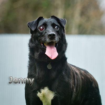 Jenny3_Russ-(9)web