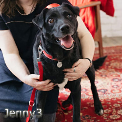 Jenny3_Update_07122019-(11)web