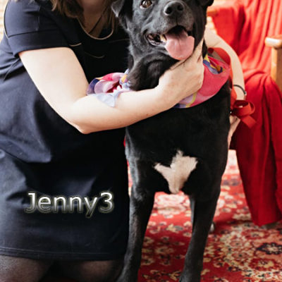 Jenny3_Update_07122019-(1)web