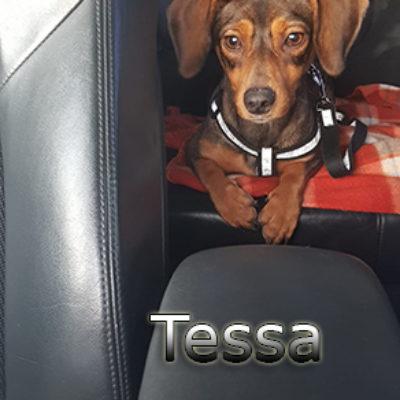 Tessa2-(11)web