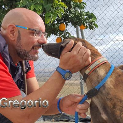 Gregorio-(37)web