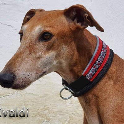 Ivaldi-(4)web