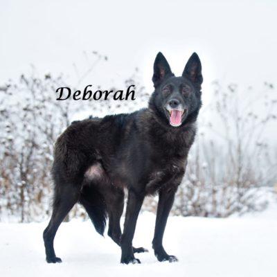 Deborah IMG-20200206-WA0059
