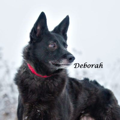 Deborah IMG-20200206-WA0061
