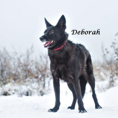 Deborah IMG-20200206-WA0067