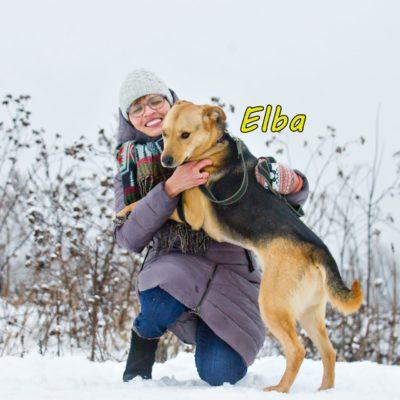 Elba IMG-20200206-WA0074